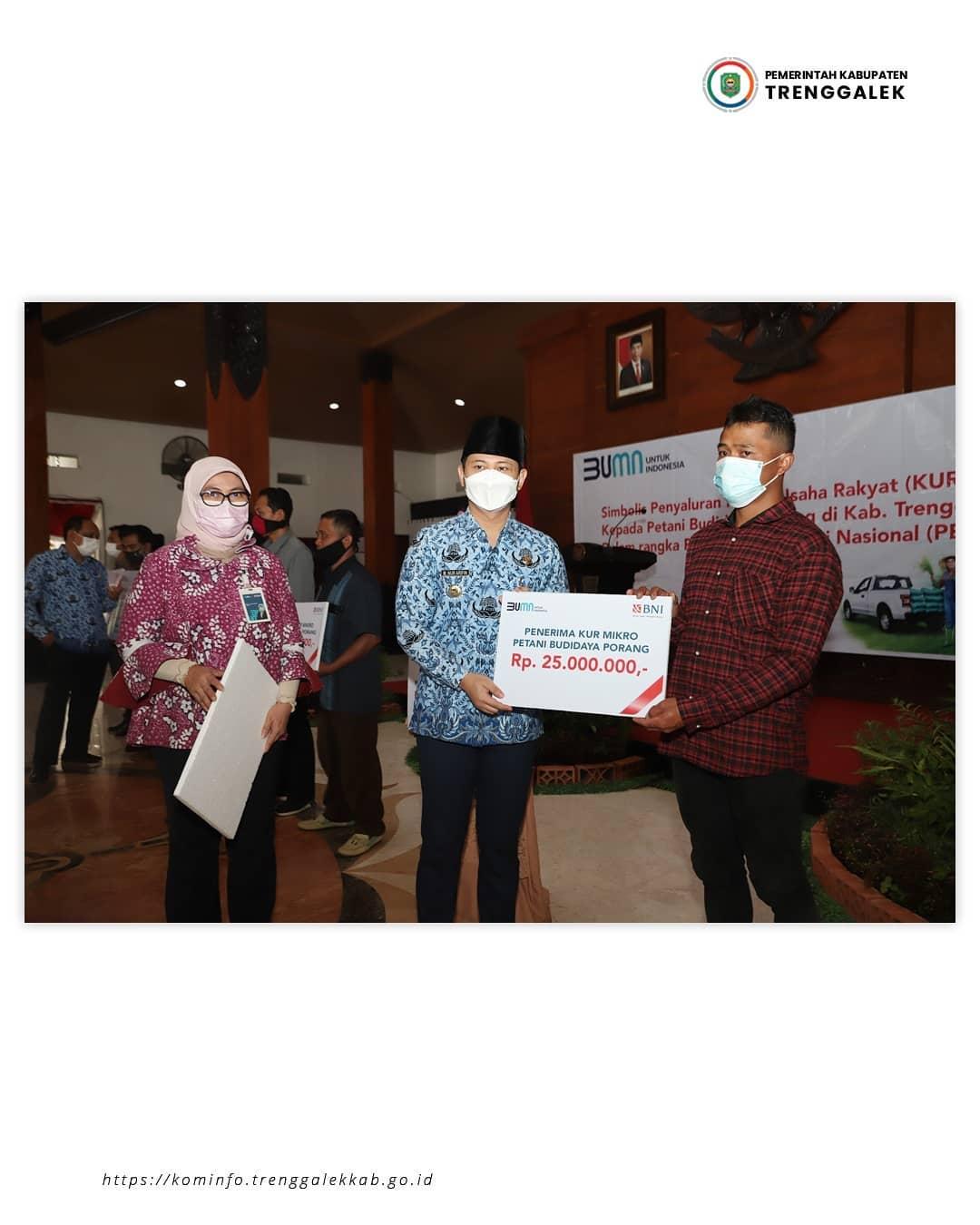 228 Petani Porang Dapatkan Pinjaman KUR Mikro, Bupati Nur Arifin Harapkan Mampu Ungkit Perekonomian di Trenggalek