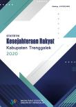 Statistik Kesejahteraan Rakyat Kabupaten Trenggalek Tahun 2020